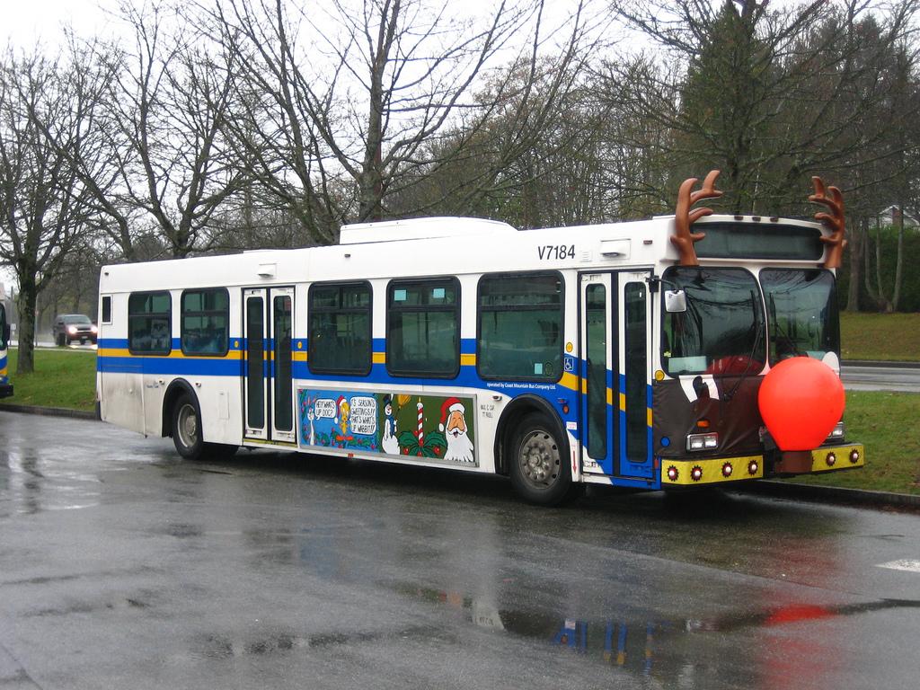 V7184 Rudolph