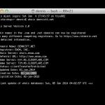 DennisTT.Net 10 years old